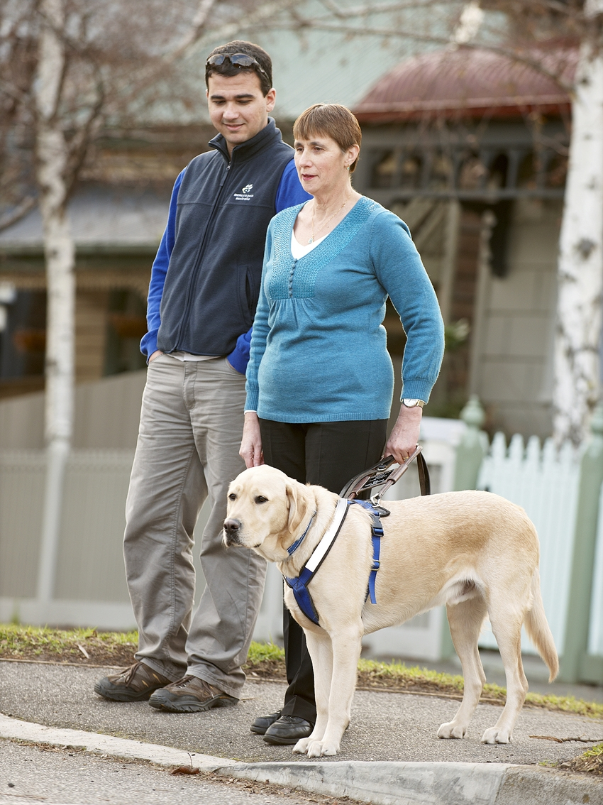 A trainer, and woman handling the seeing eye dog, wait to cross the road